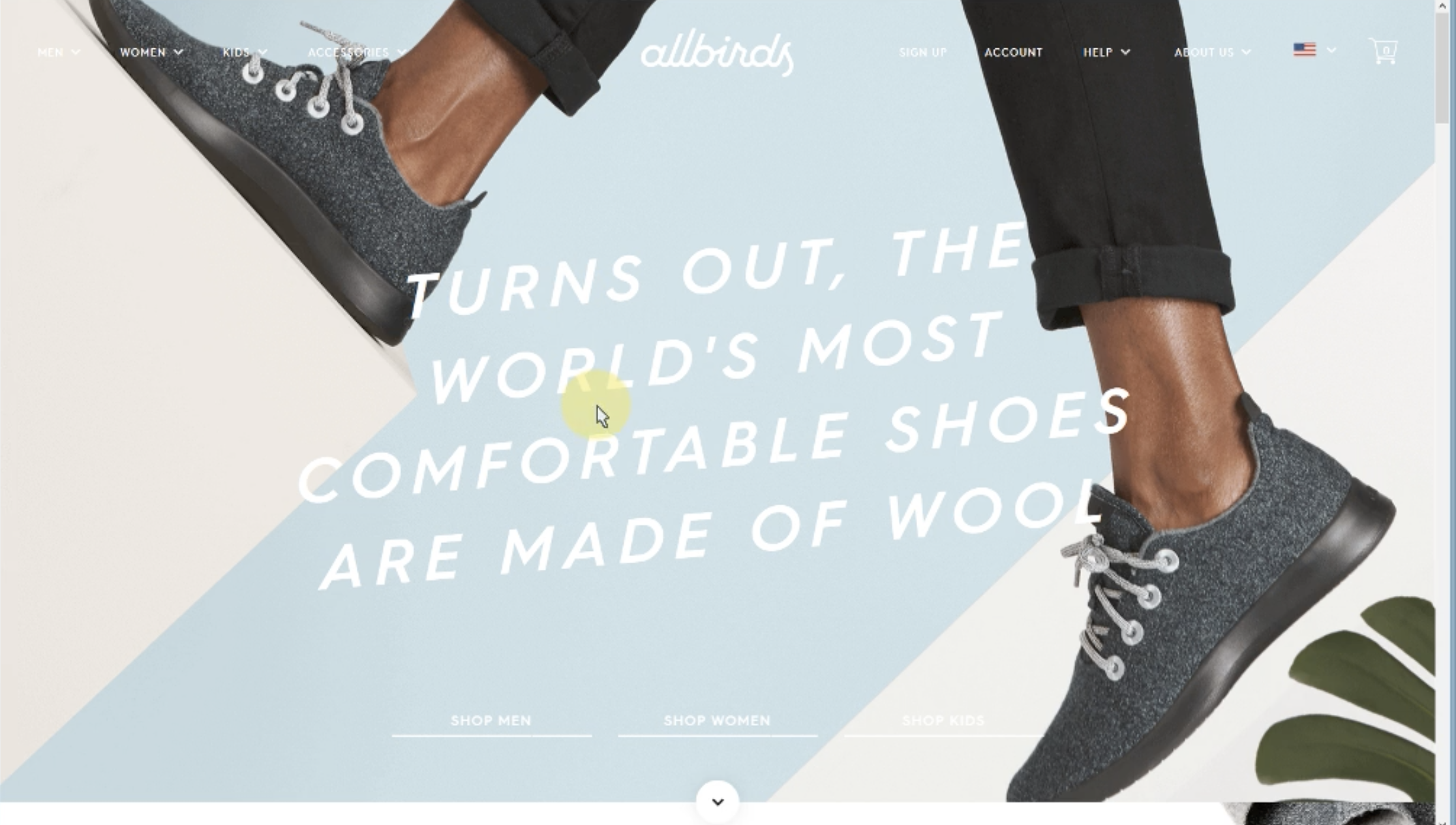 A user viewing the AllBirds website home page